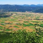 Cómo Big Data puede transformar el sector agrario